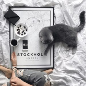Stockholm Travel Guide - Mapiful