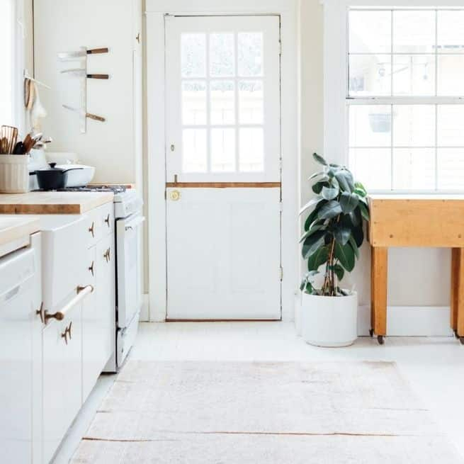Introduce Peace into Your Interior Style kitchen plant