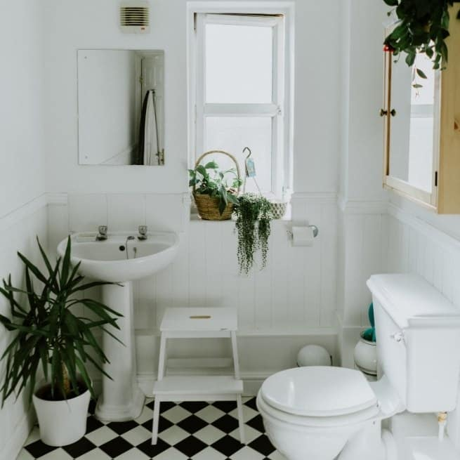 Small bathroom with plants and bright lighting