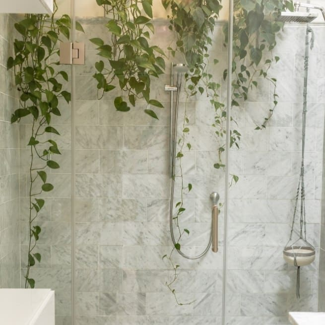 Beautiful glass shower with plants
