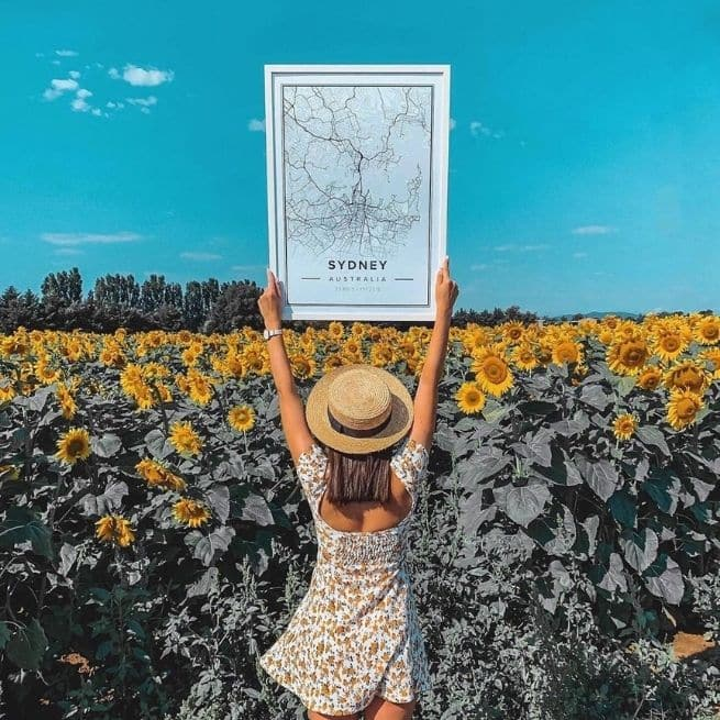 Declutter Your Mind Outdoors Sunflower Mapiful Poster