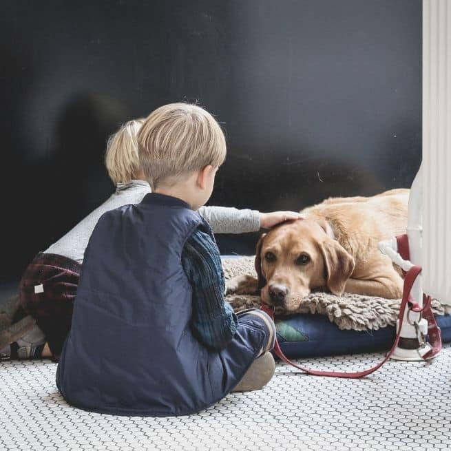 two boys with a dog